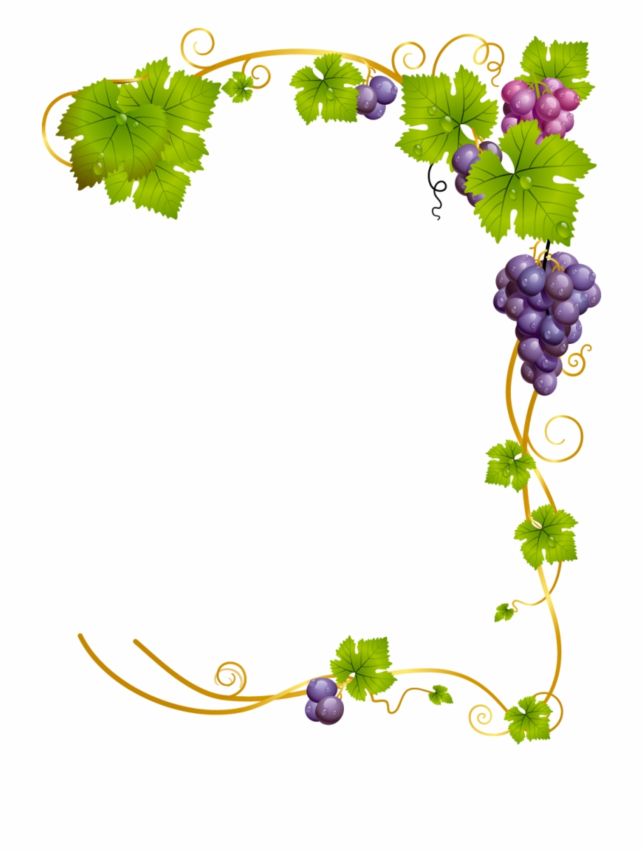 Grape clipart frame. Corner vine png pngtube