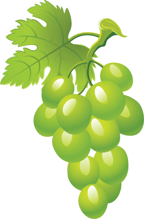 Green grapes png free. Grape clipart frame