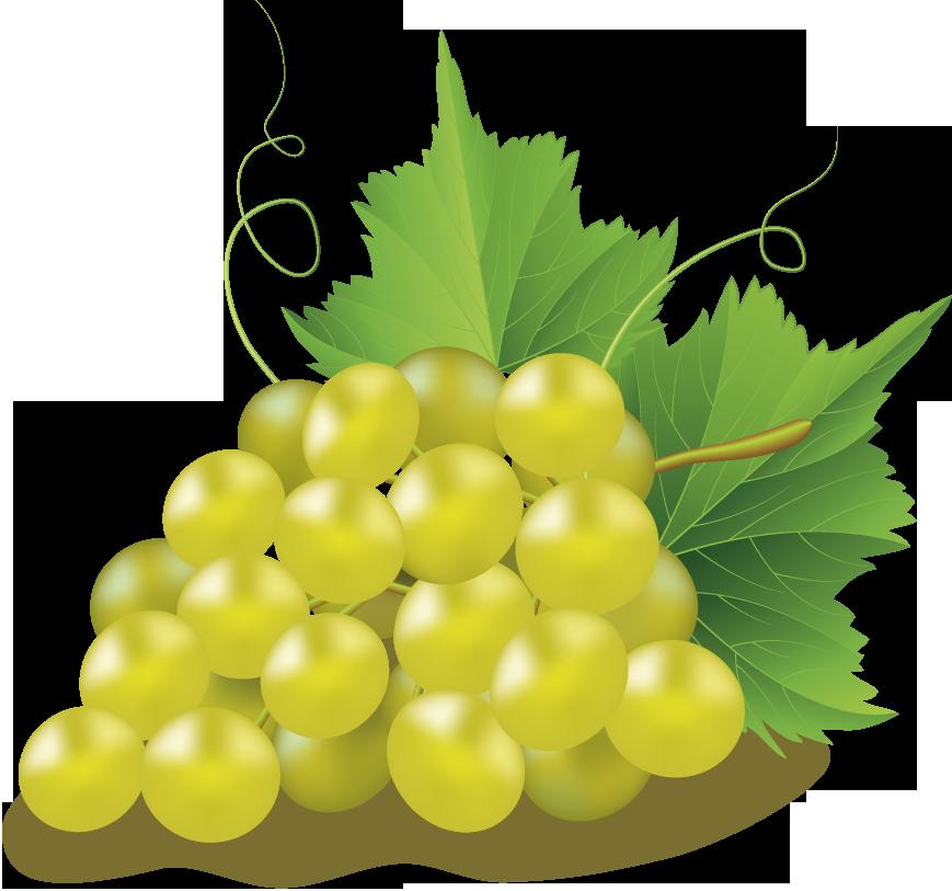 Clip art transprent png. Grape clipart friuts