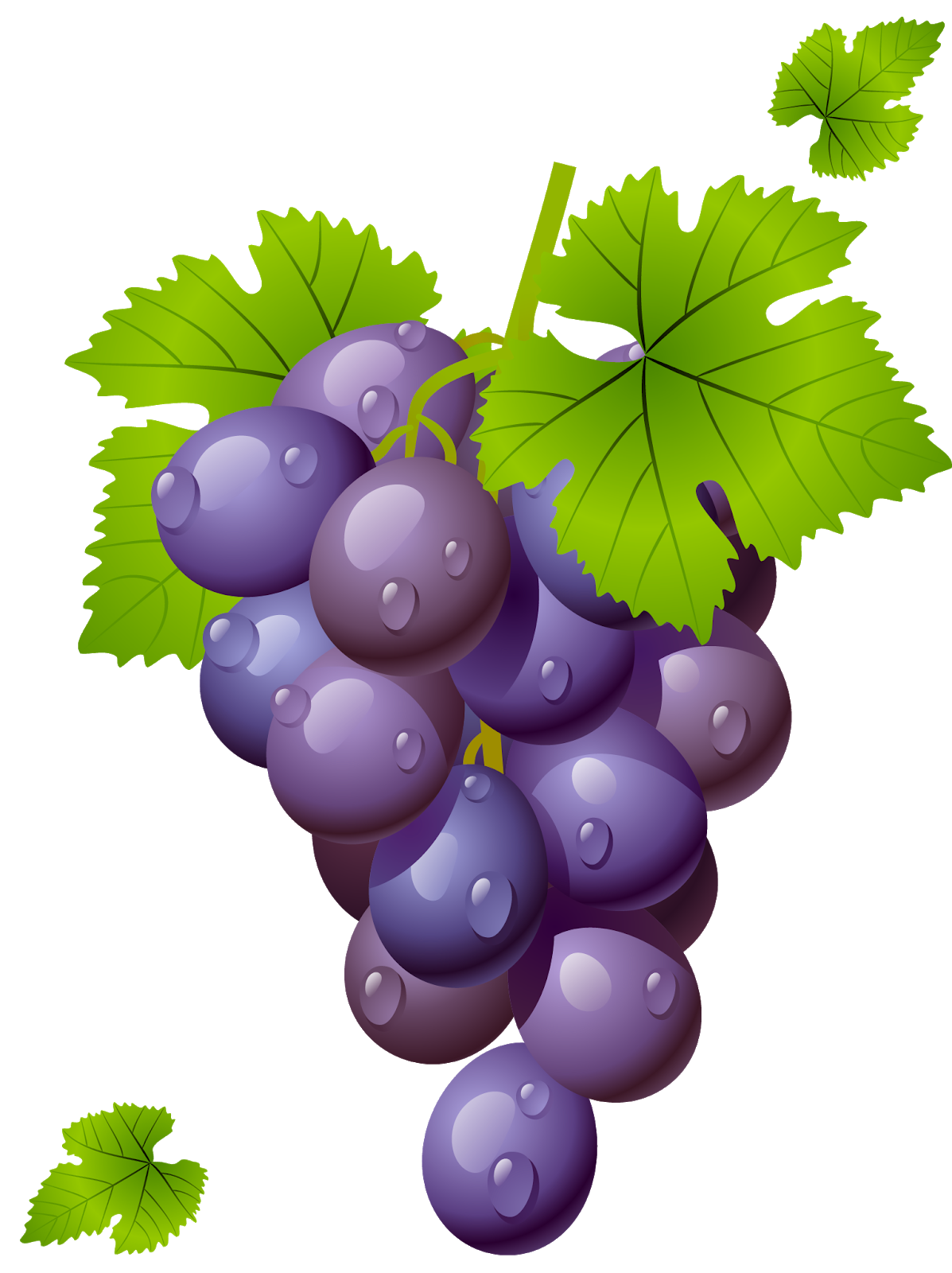 Grape clipart fruit individual. We get it bro