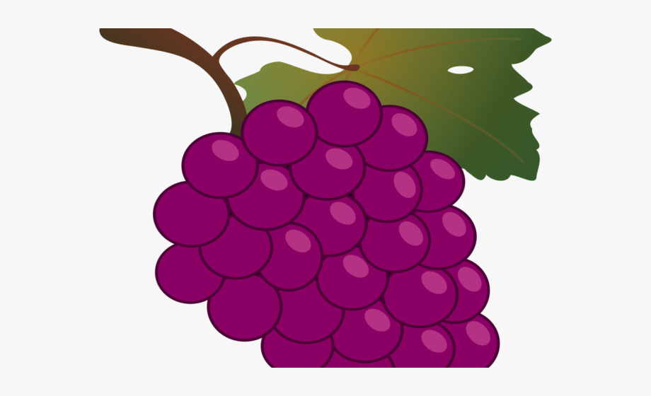 Transparent background grapes clip. Grape clipart fruit individual