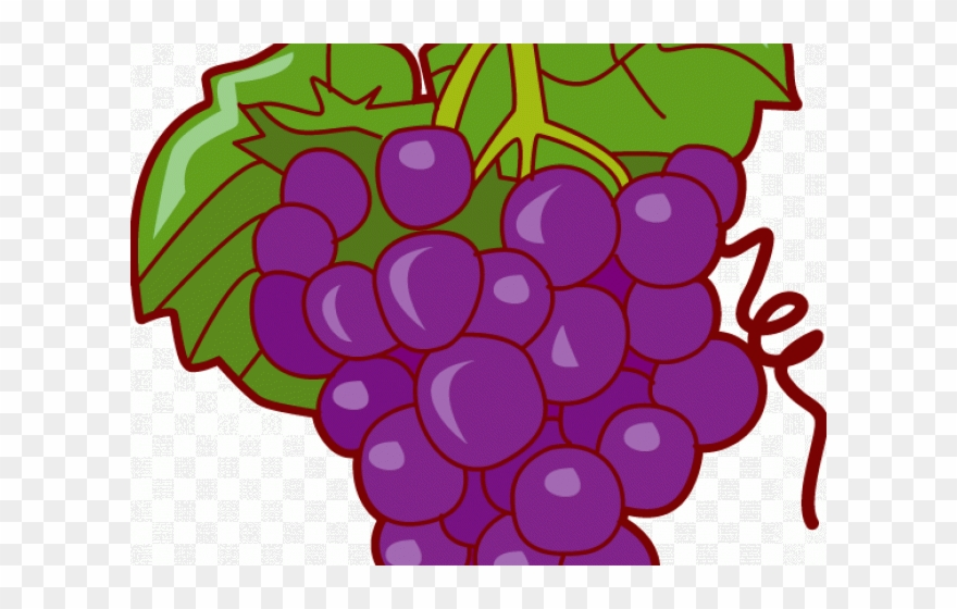 Grapes pop art fruits. Grape clipart fruit vegetable