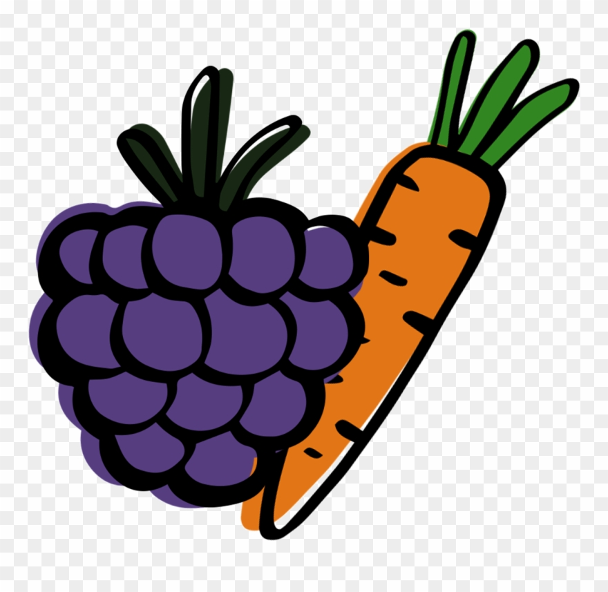 Grape clipart fruit vegetable. Individual png download