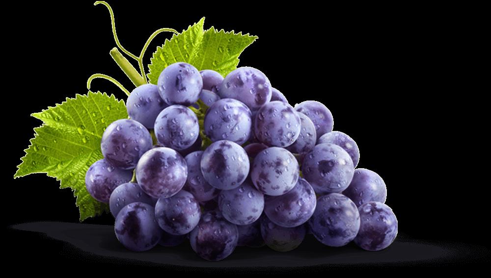 Grape clipart grap. Juices jams jellies spreads