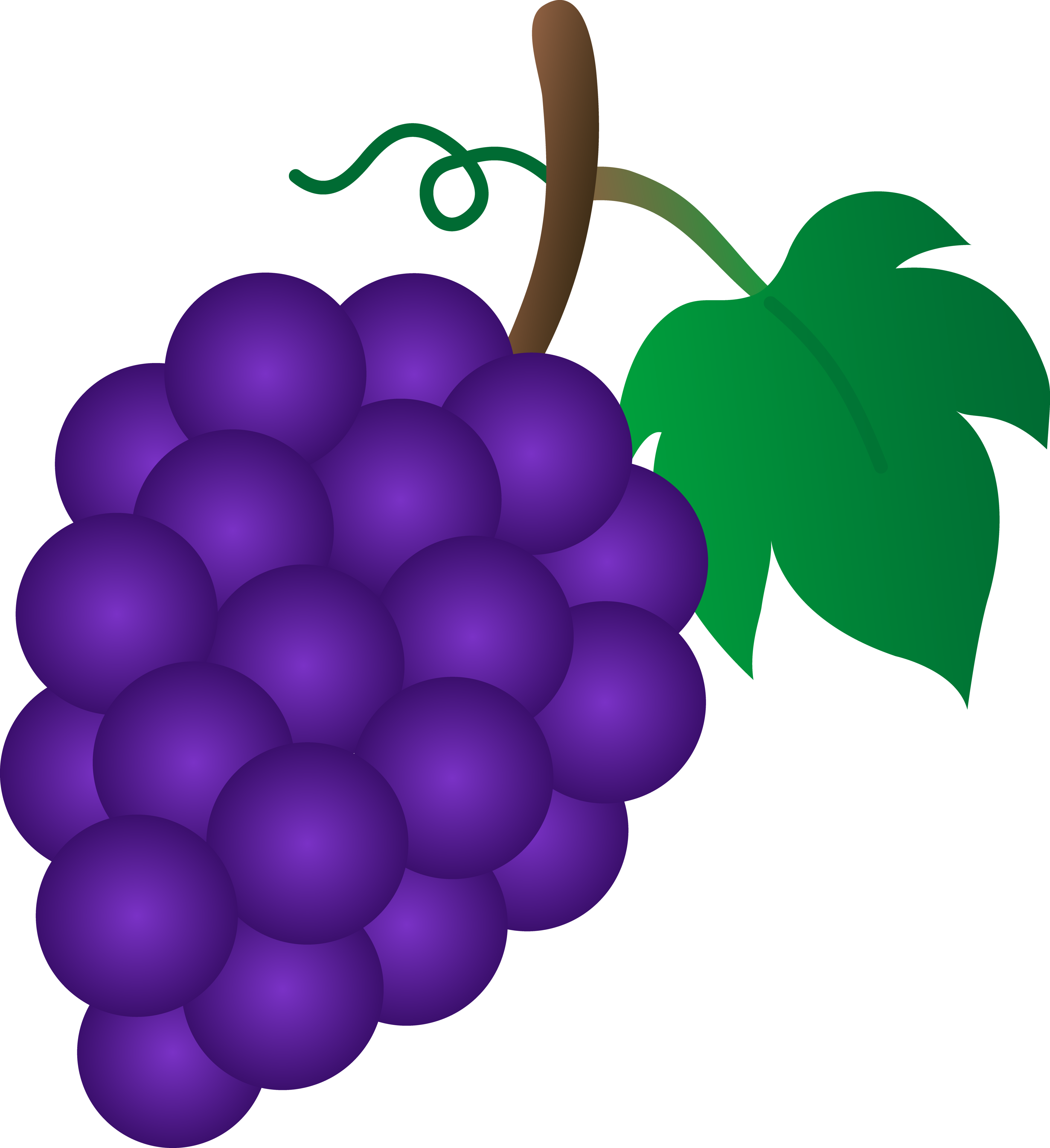 collection of bunch. Grape clipart grap