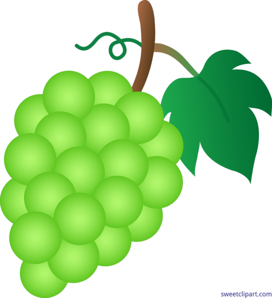 Food and drink archives. Grape clipart grape soda