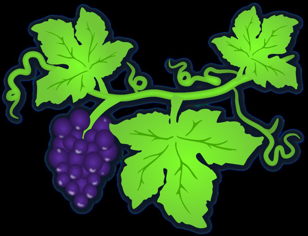 Onlinelabels clip art grapes. Grape clipart greaps
