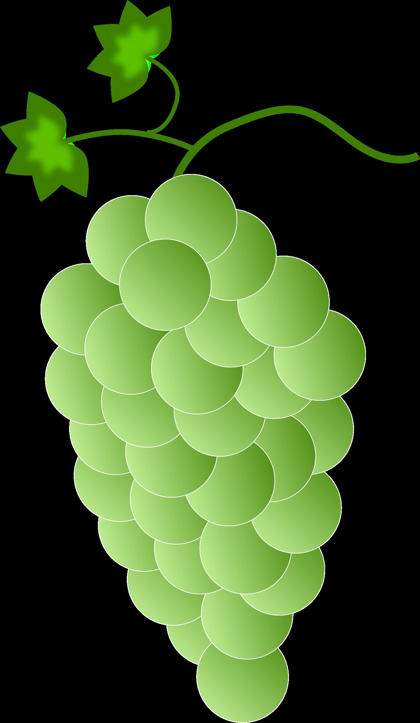 I clipart grape. Greenwhite grapes big image