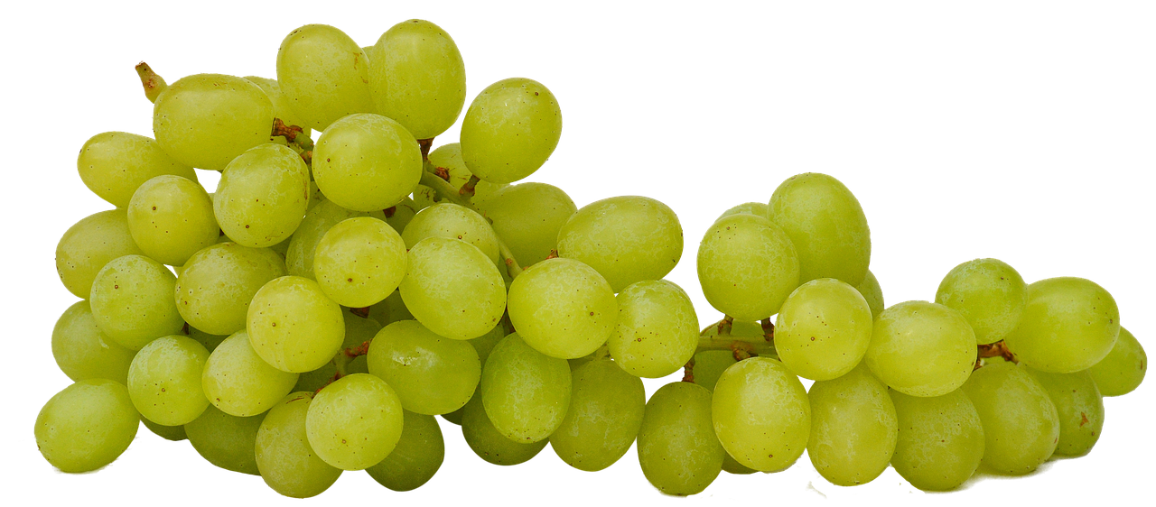 Grapes clipart health food.  calories a day