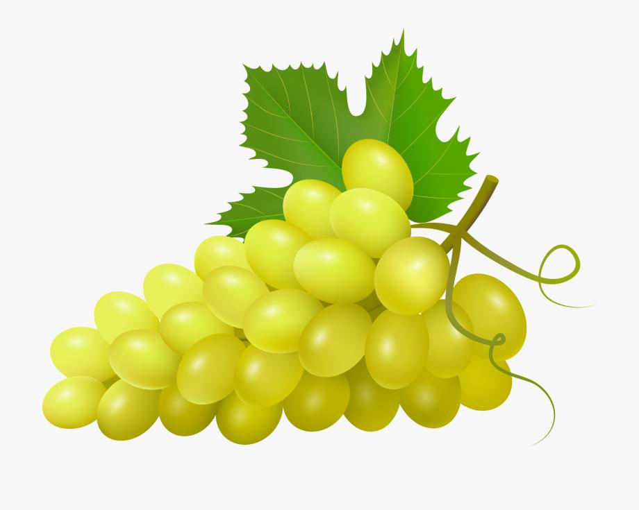 Grapes clipart health food. Imagens de uvas verdes