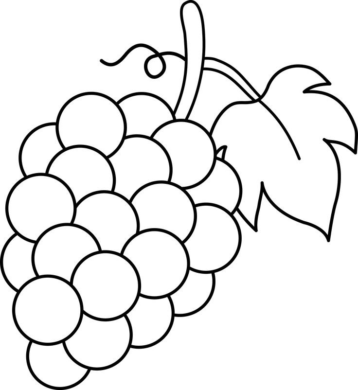Free art grapes download. Grape clipart illustration