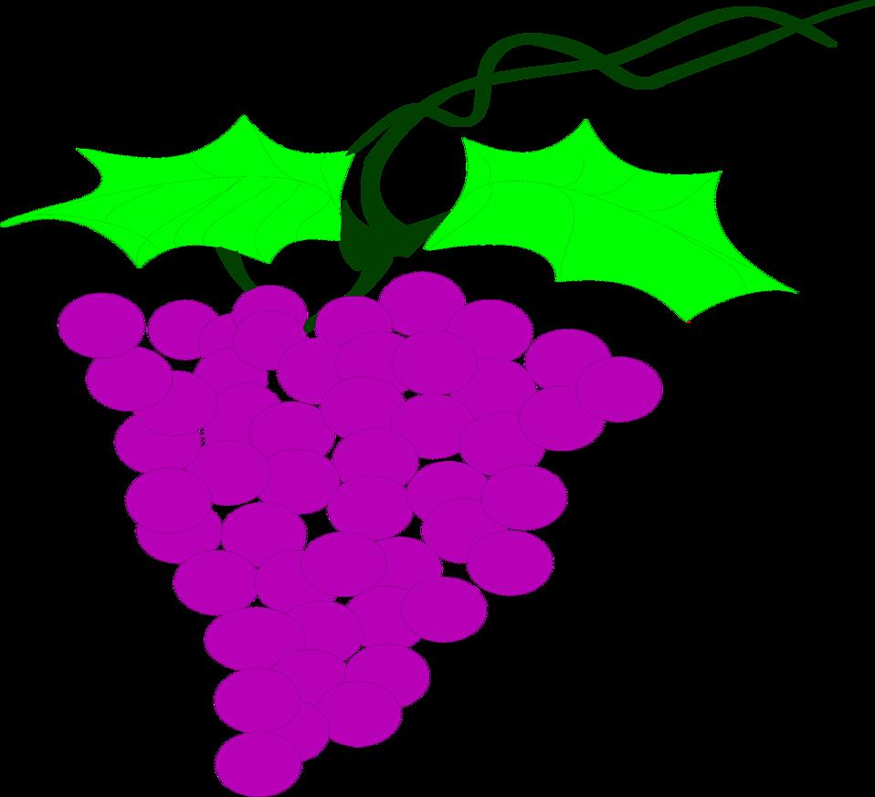 Grapes clipart bowl grape. Free stock photo illustration