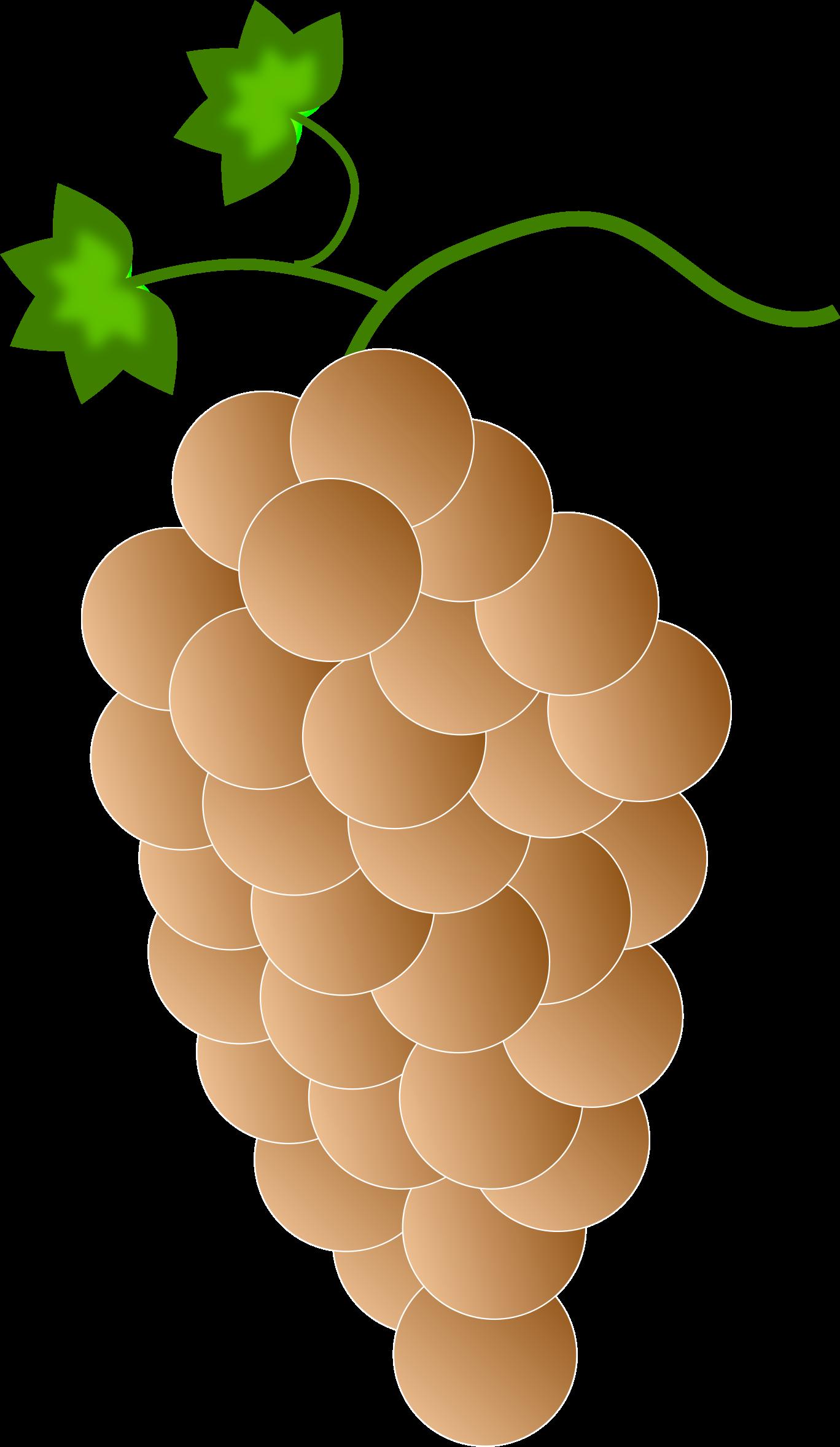 Orange grapes big image. Grape clipart orenge