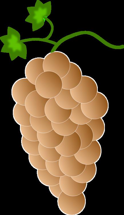 Grapes clipart orange. Plant grape grapevine family