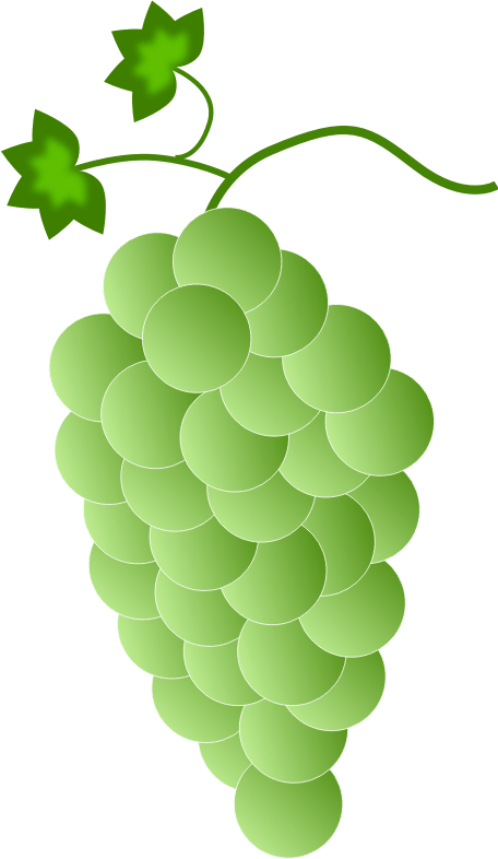 Collection of free grype. Grapes clipart grape soda