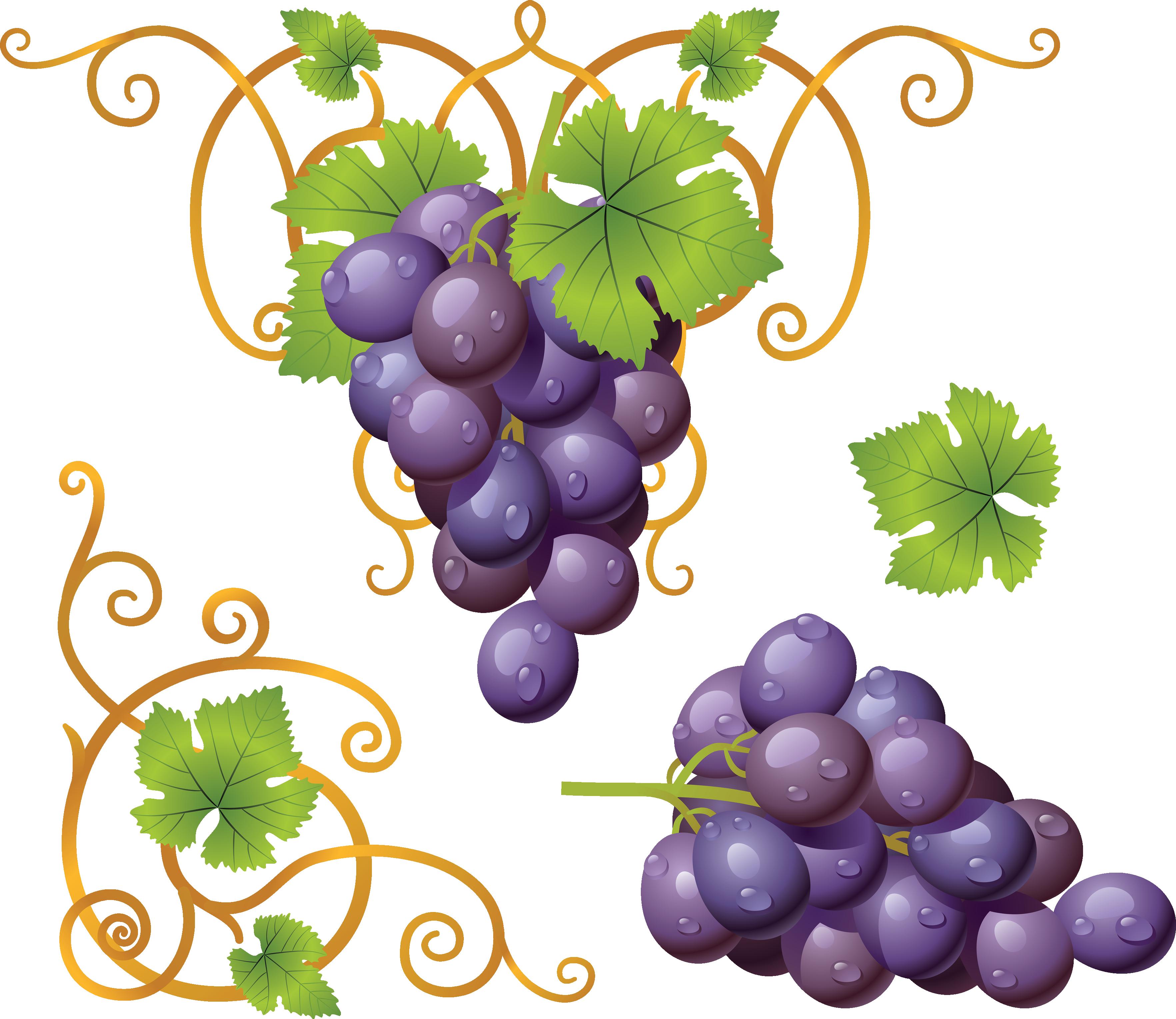 e a ba. Grape clipart pacman fruit