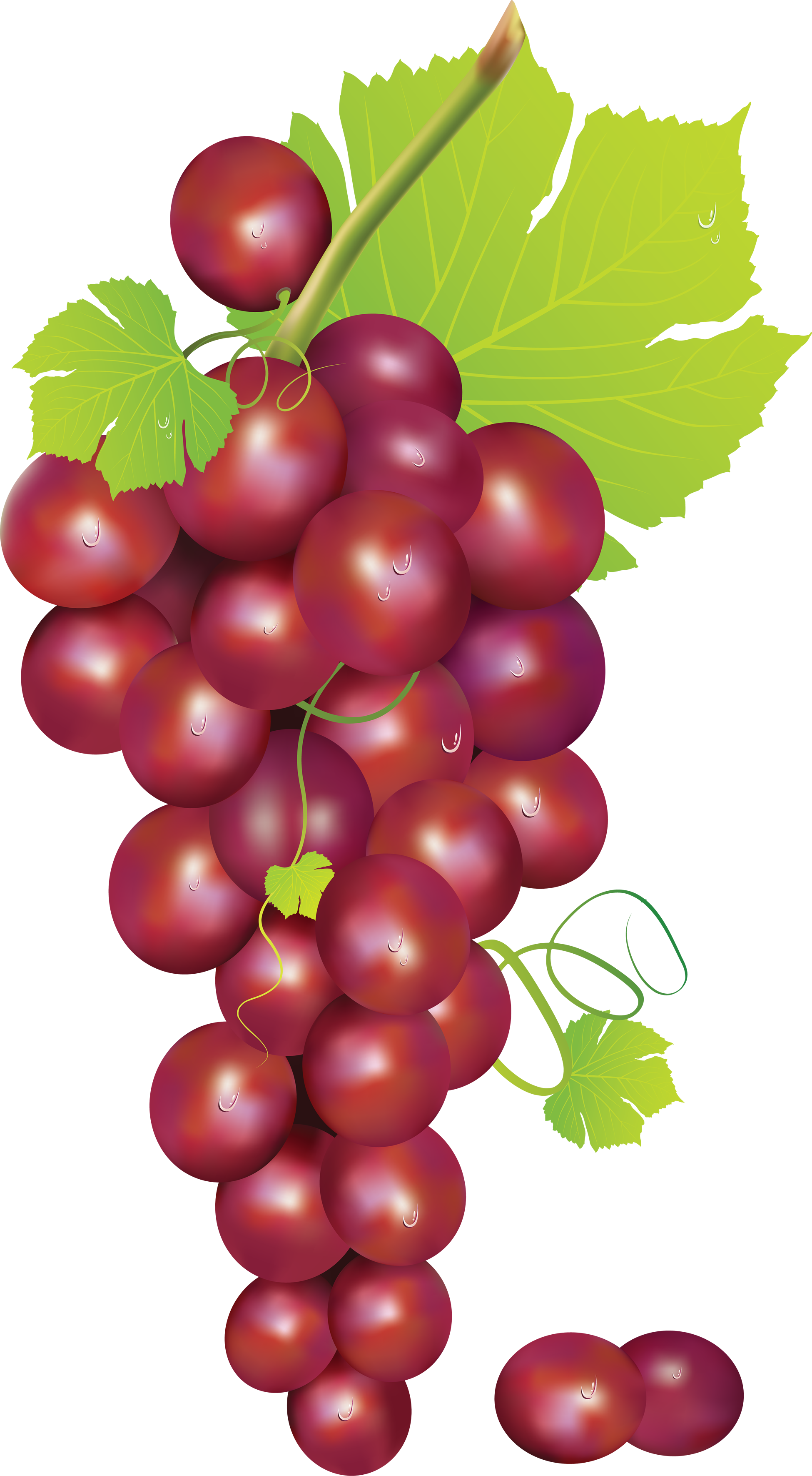 Grapes clipart fruit individual. Ghost green pacman stickers