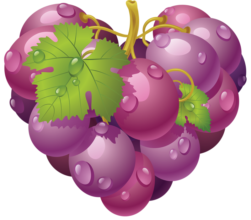 Grape png image free. Grapes clipart purple berry