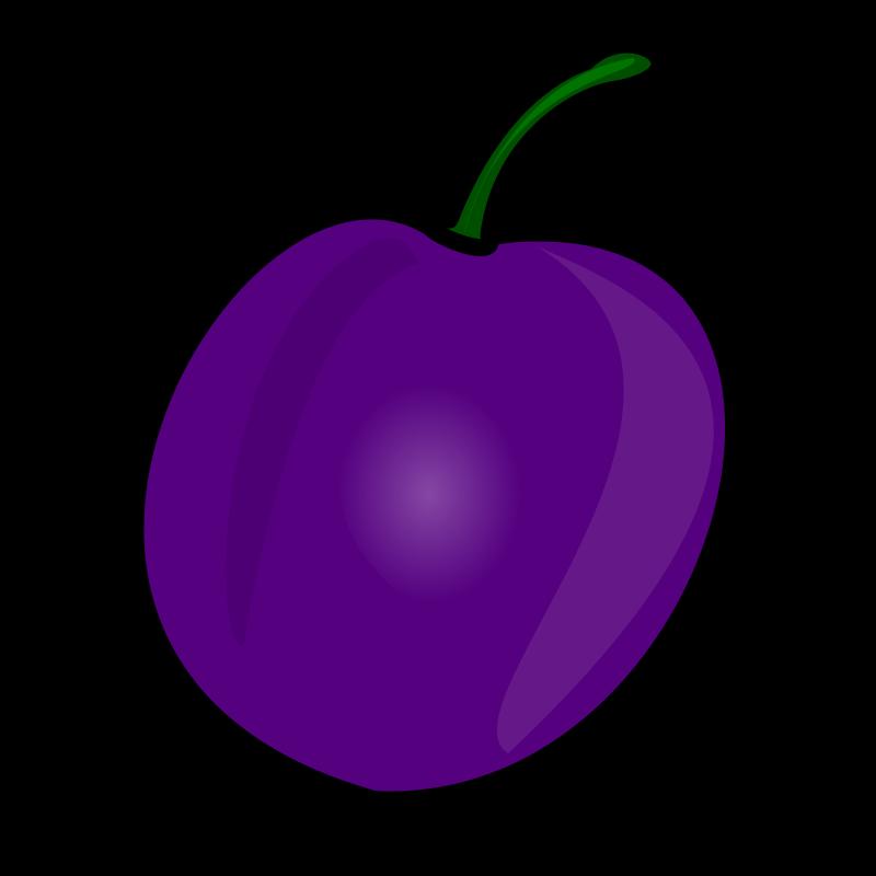 Grape clipart plum fruit. Plums free download best