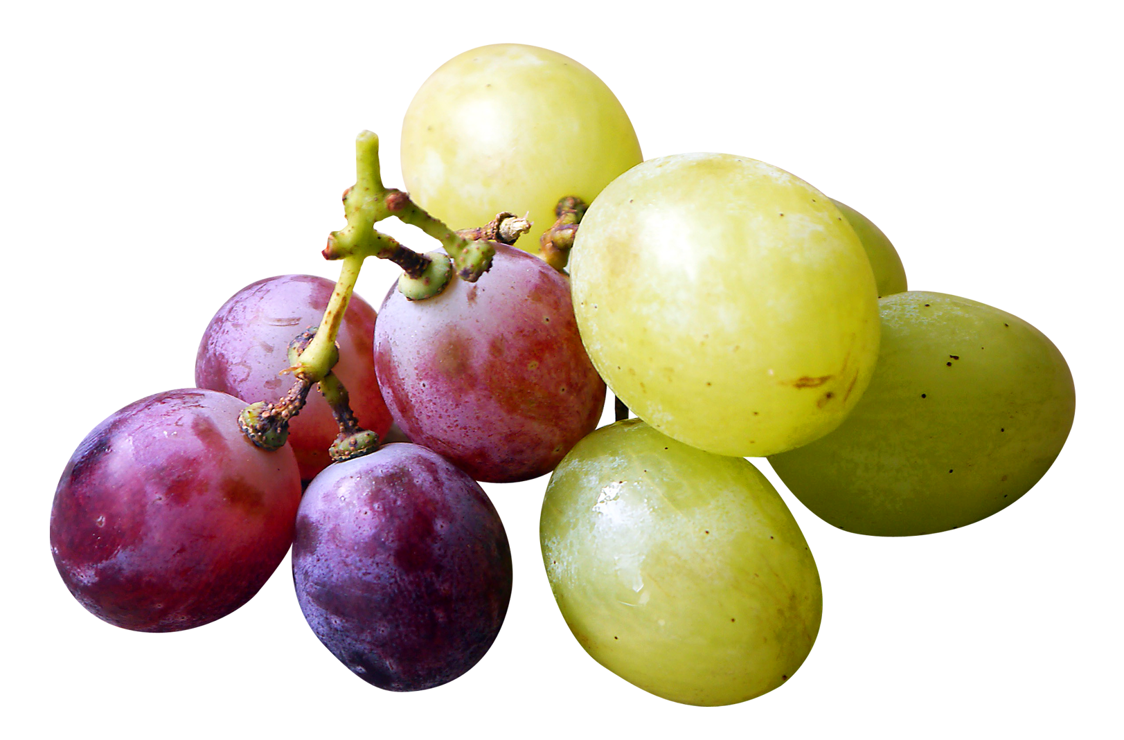 Red and green grapes. Grape clipart plum fruit