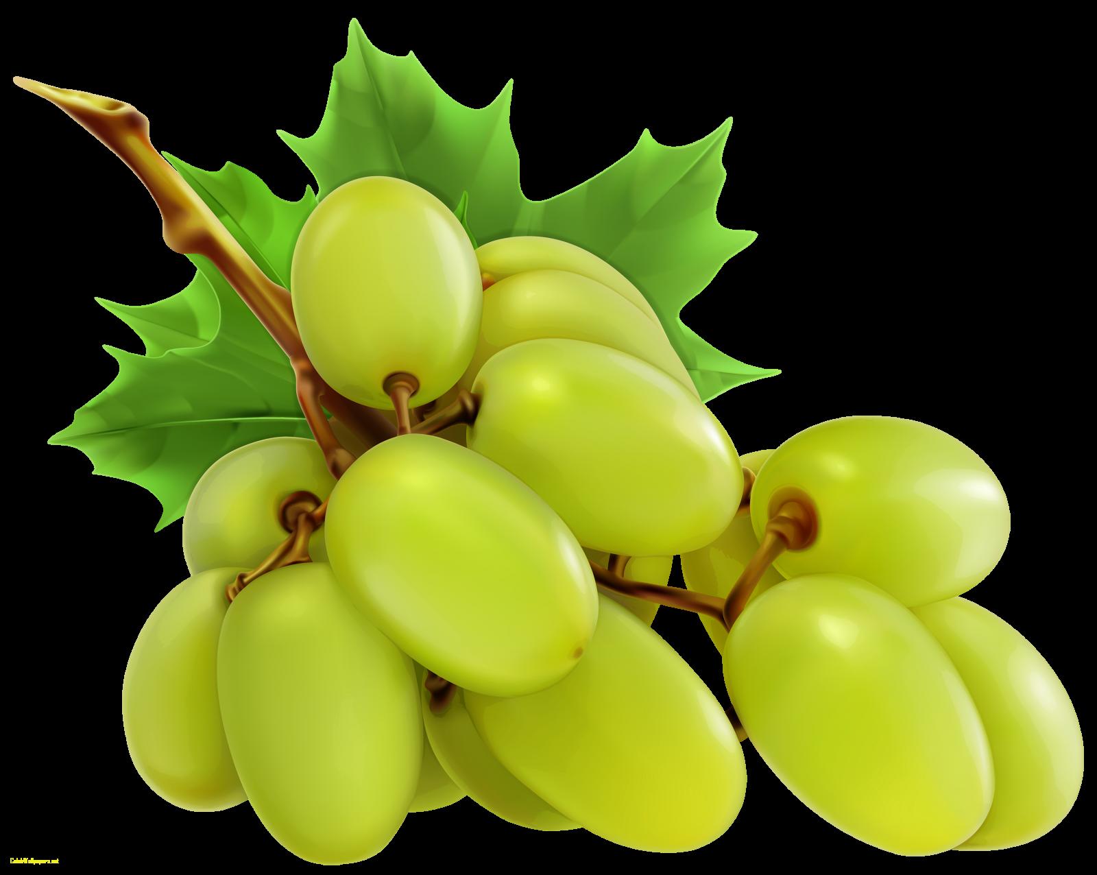 Grape clipart plum fruit. Grapes images queen fruits