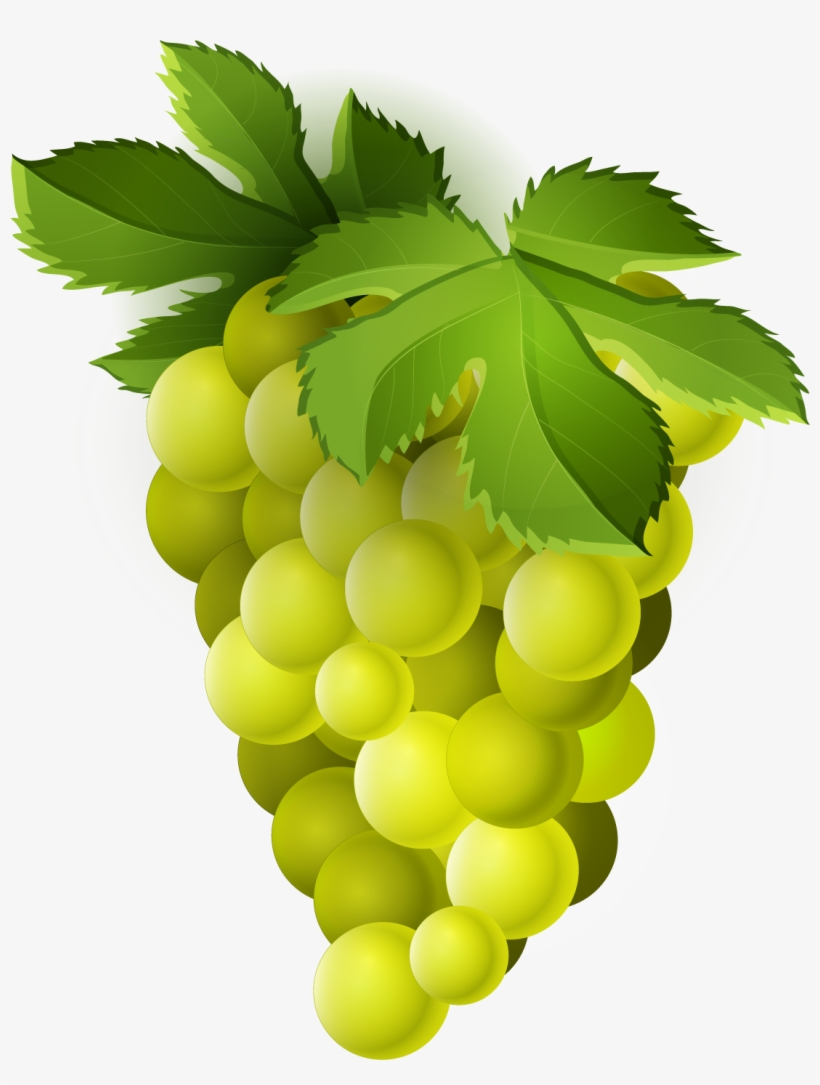 Grapes free images . Grape clipart printable