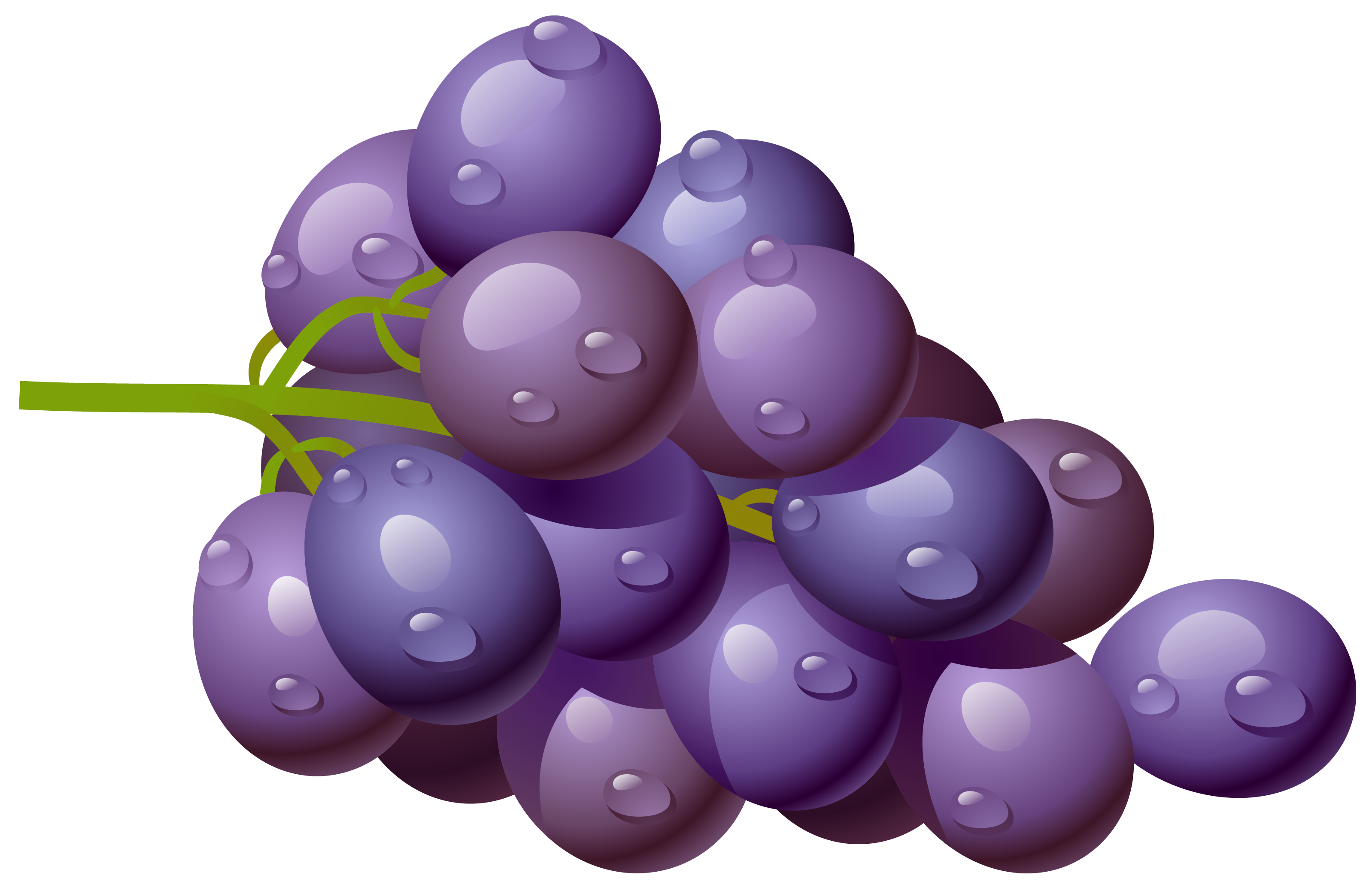 collection of png. Grape clipart pruple
