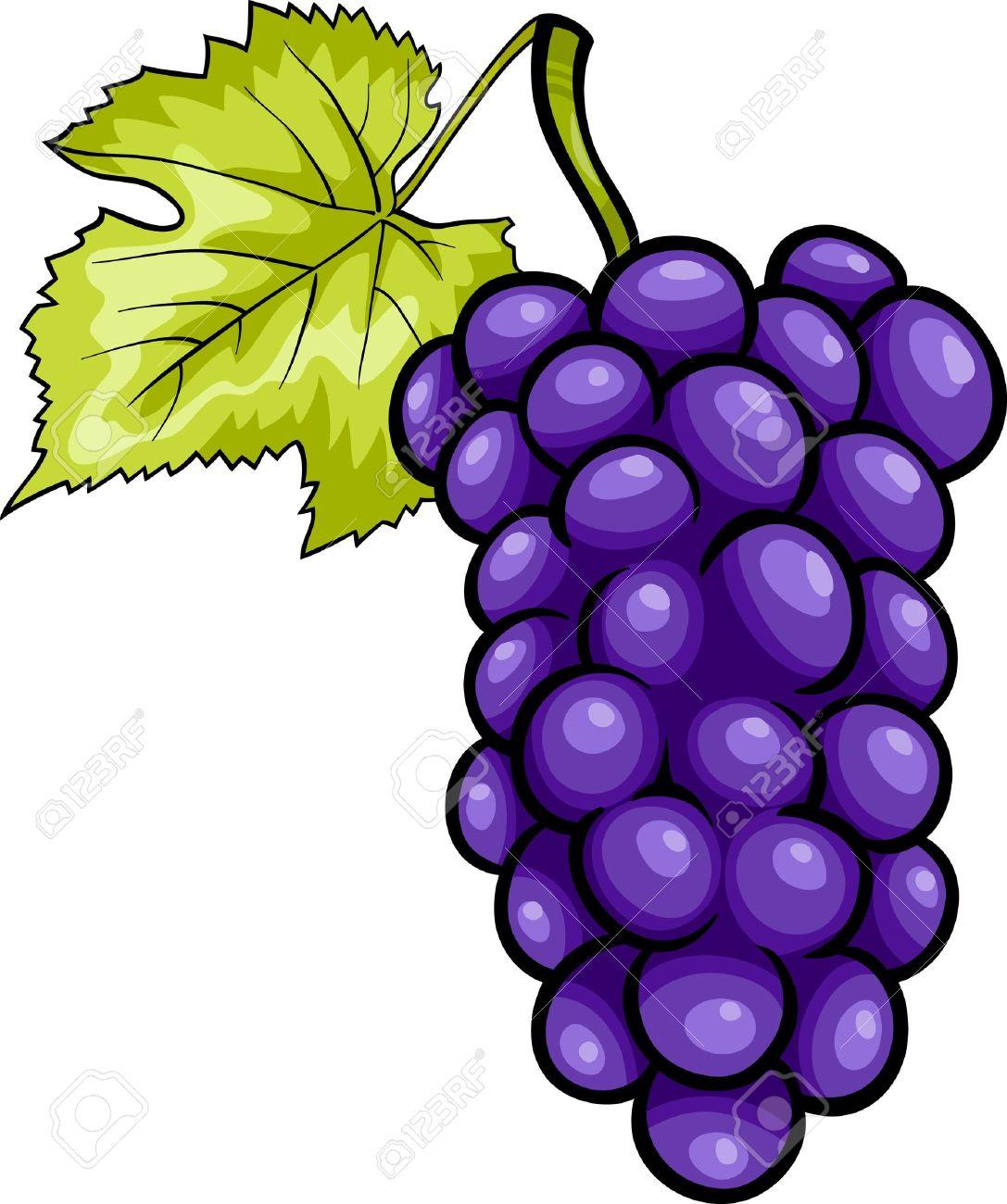 Grape clipart purple colour. Grapes free download best