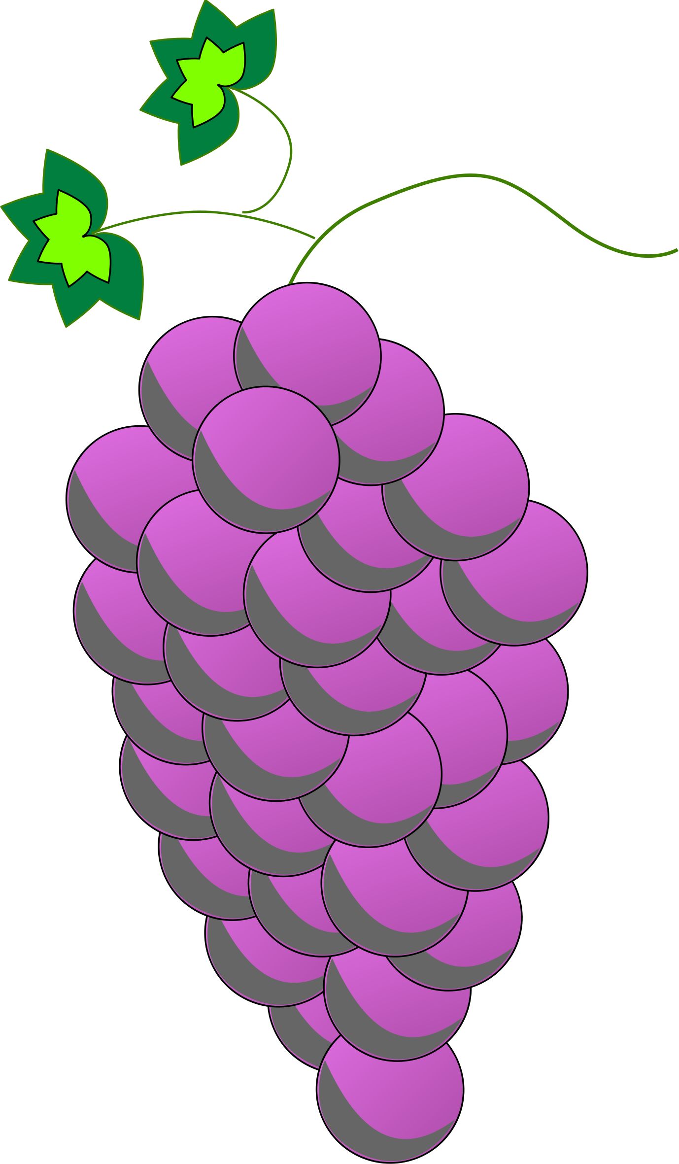 grape clipart purple colour