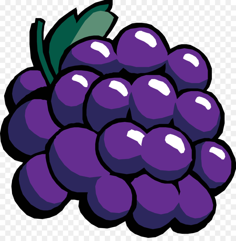 Drawing of family grape. Grapes clipart purple food