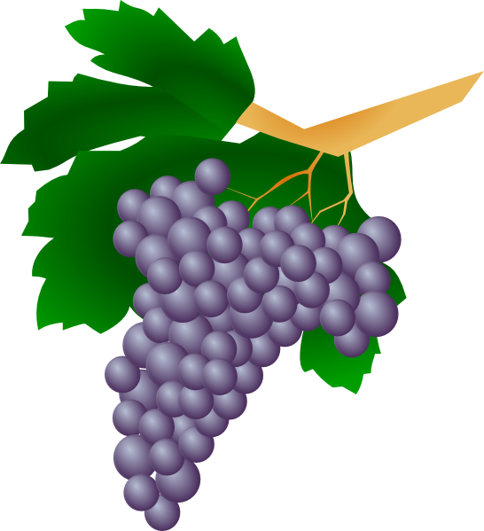 Grapes clipart purple berry. Clip art at clker