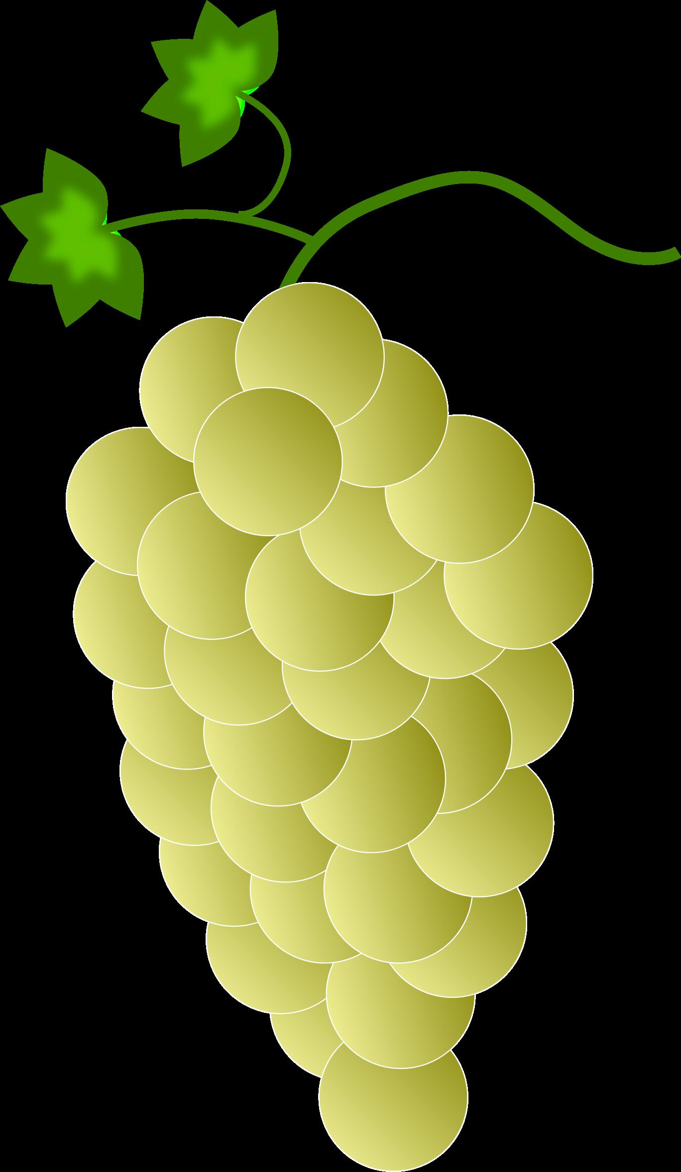 Grapes clipart ten. Yellow big image png
