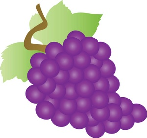 Grapes clipart real purple. Free clipartix