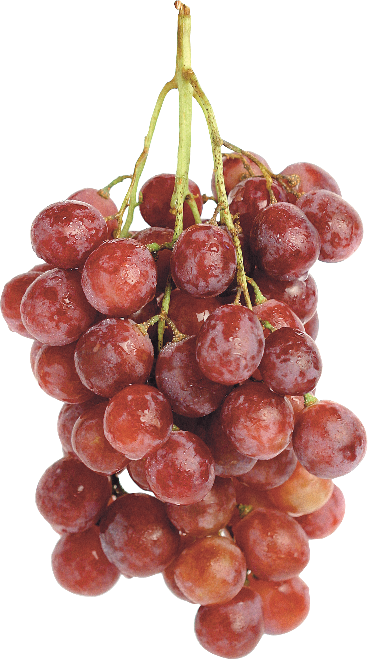 Red png image purepng. Grapes clipart orange