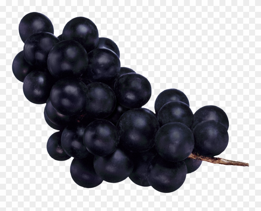 Grapes clipart ten. Grape greenorganics balsamico di