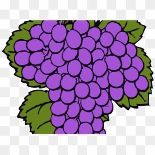 Spies of canaanites hd. Grapes clipart ten