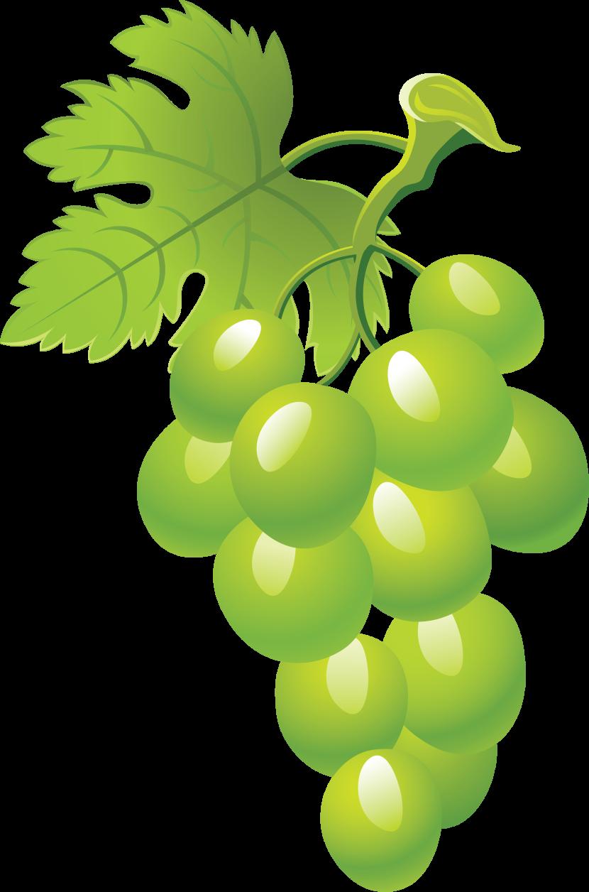 Grapes clipartix . Grape clipart vine clip art