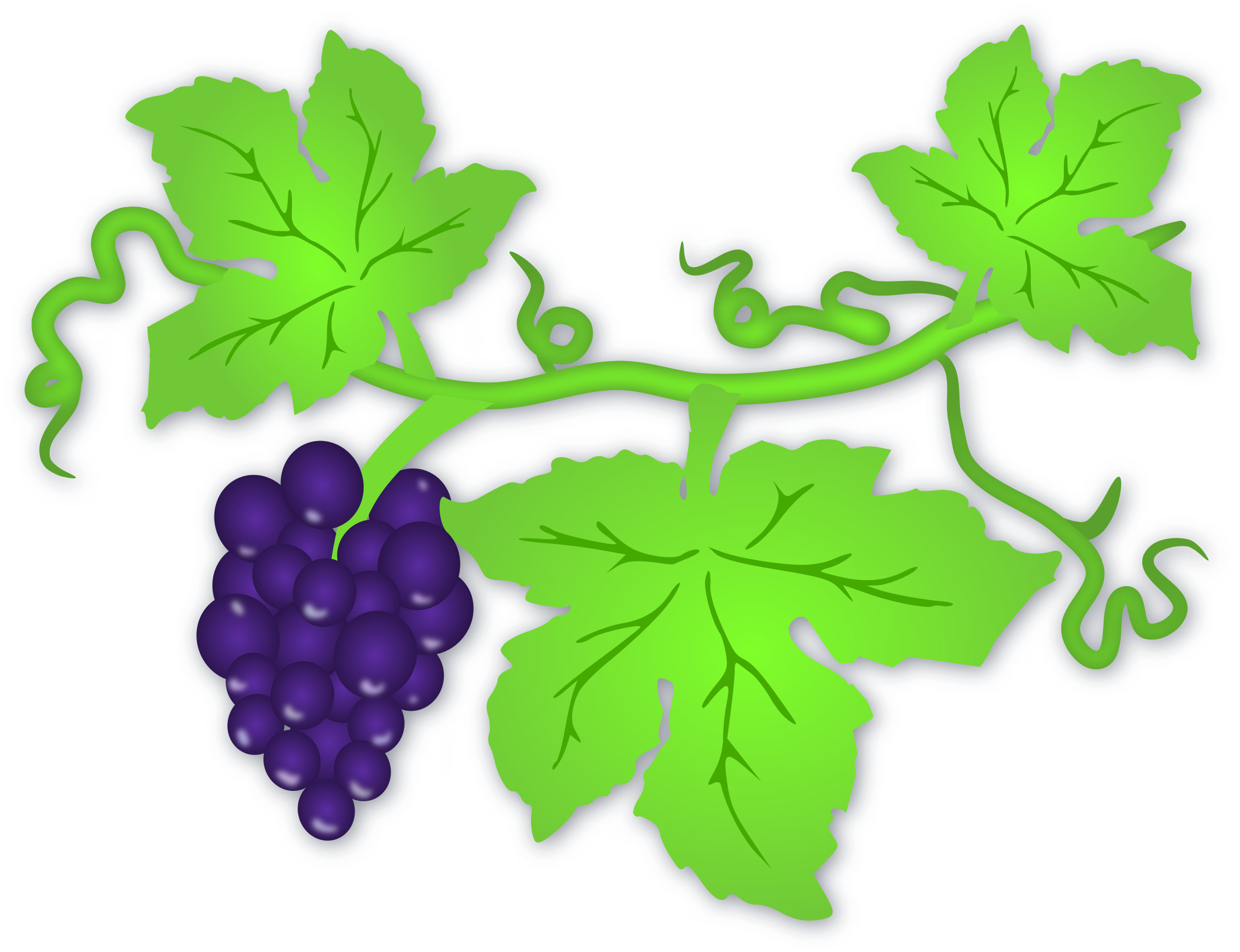 Grapes clipart frame. Big image png