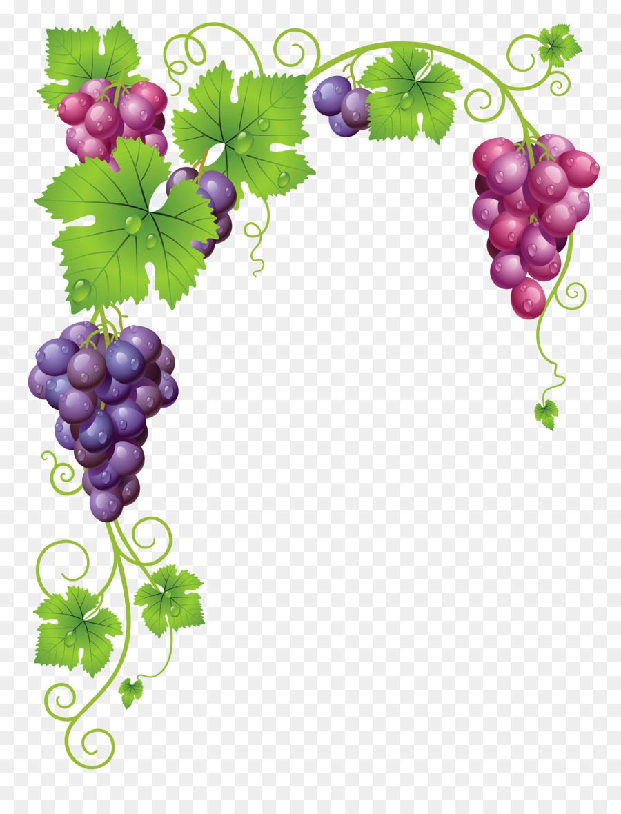 Grape cartoon wine food. Grapes clipart watermelon vine