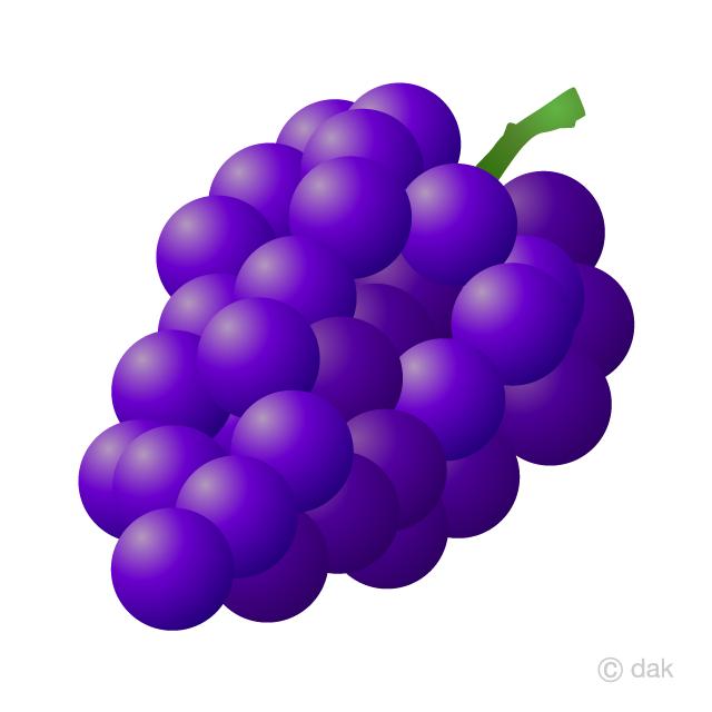 Grape clipart violet. Free picture illustoon