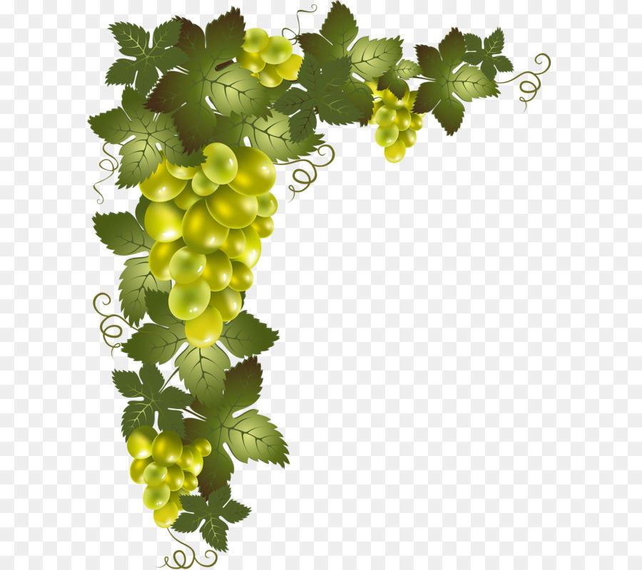 Grapes clipart watermelon vine. Background