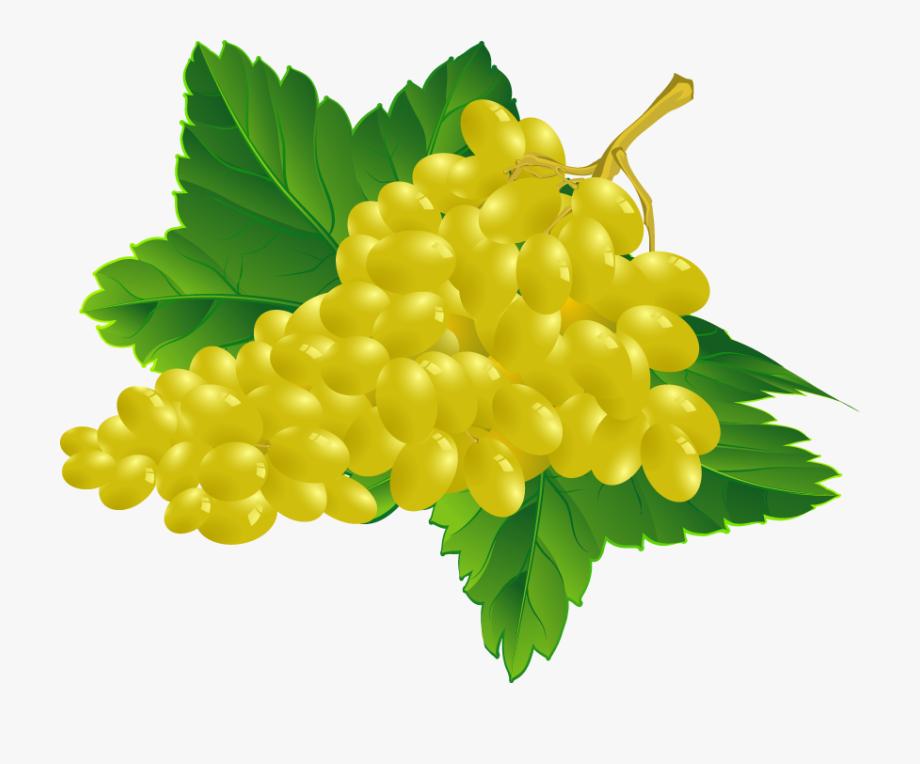 Grape clipart yellow. Grapes fruits png transparent