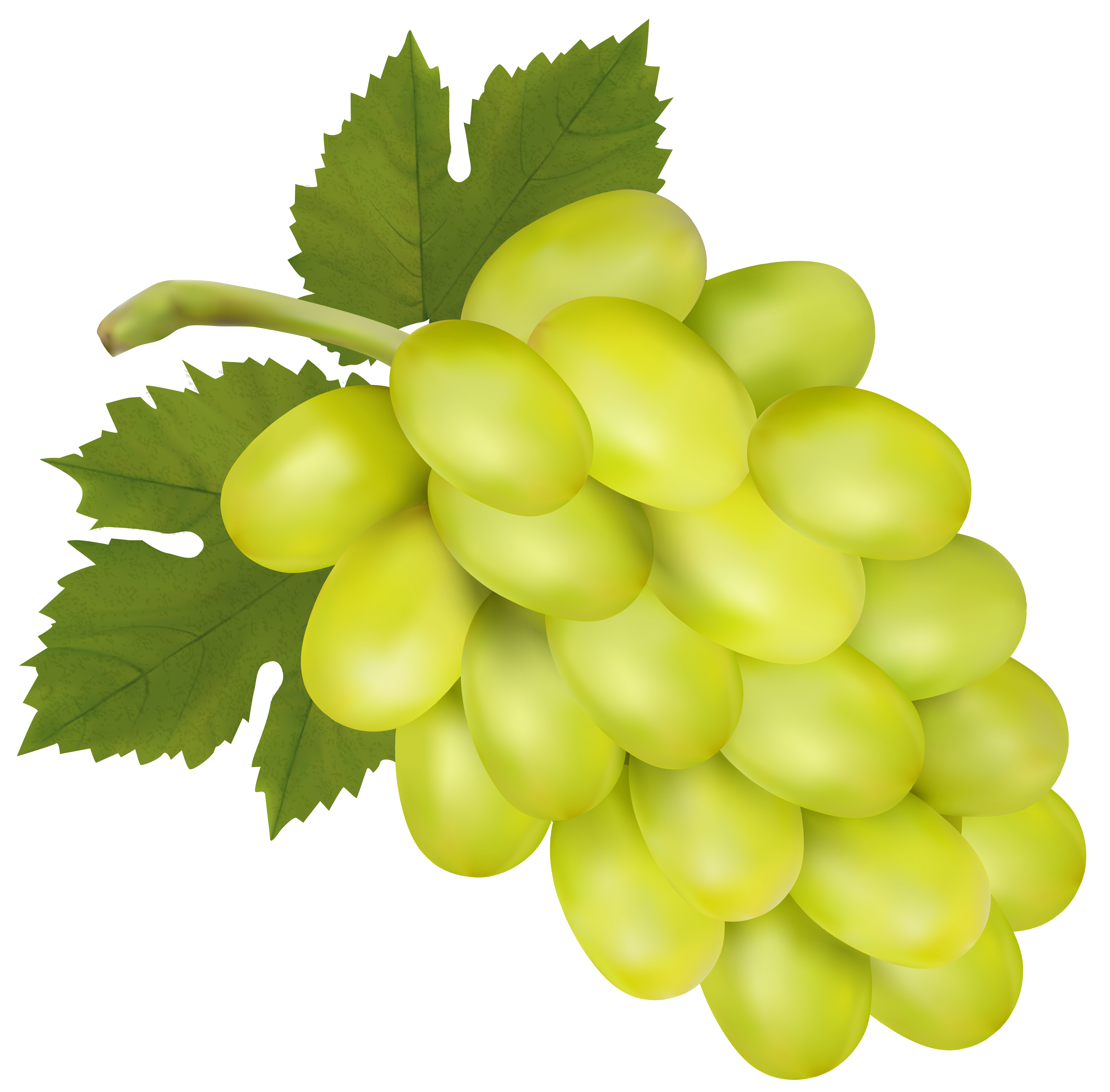 Grapes clipart yellow. White grape png clip