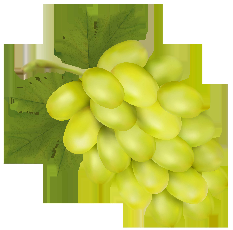 Watermelon clipart grape. White png clip art