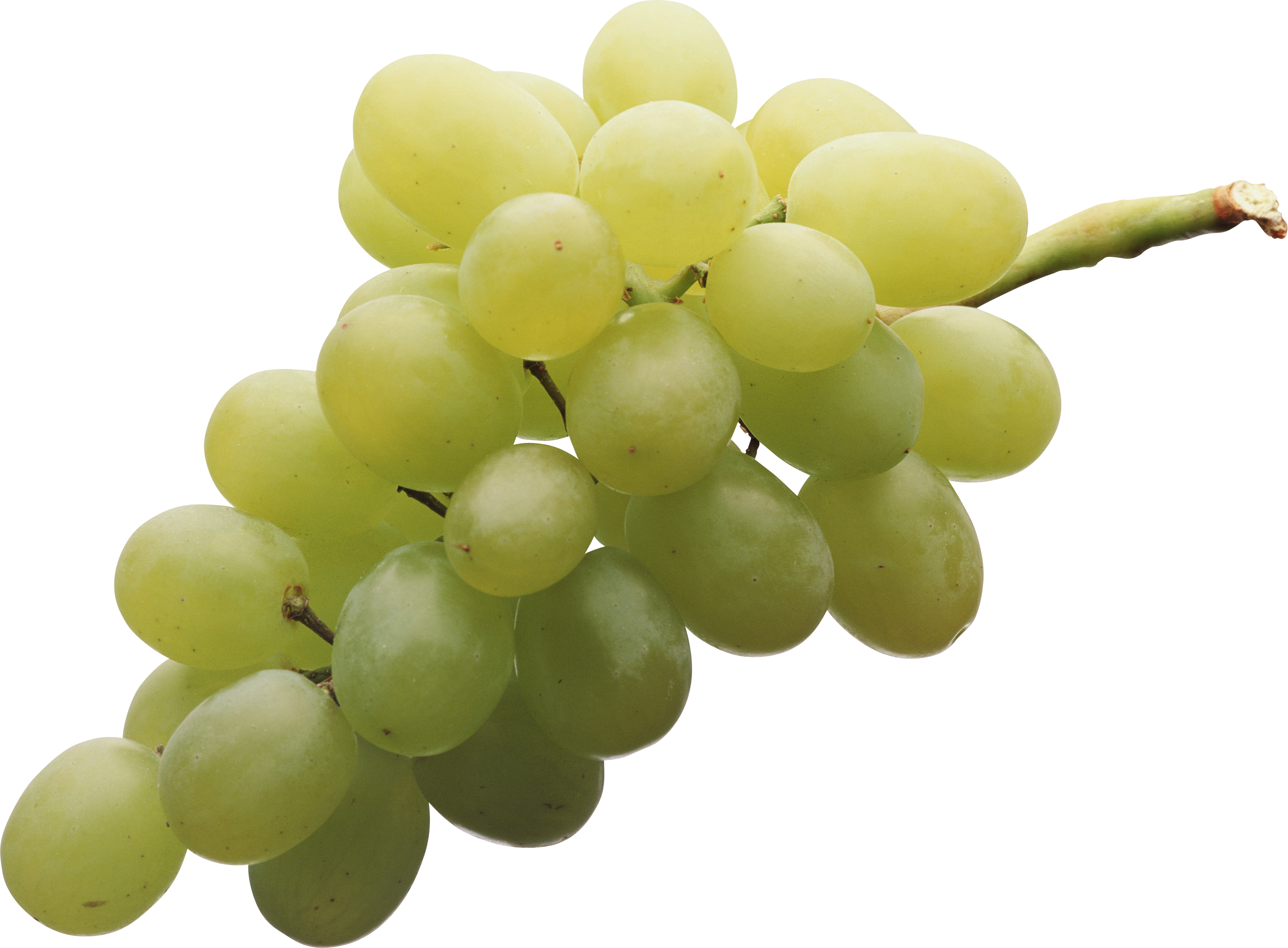 Grape clipart yellow. Png web icons