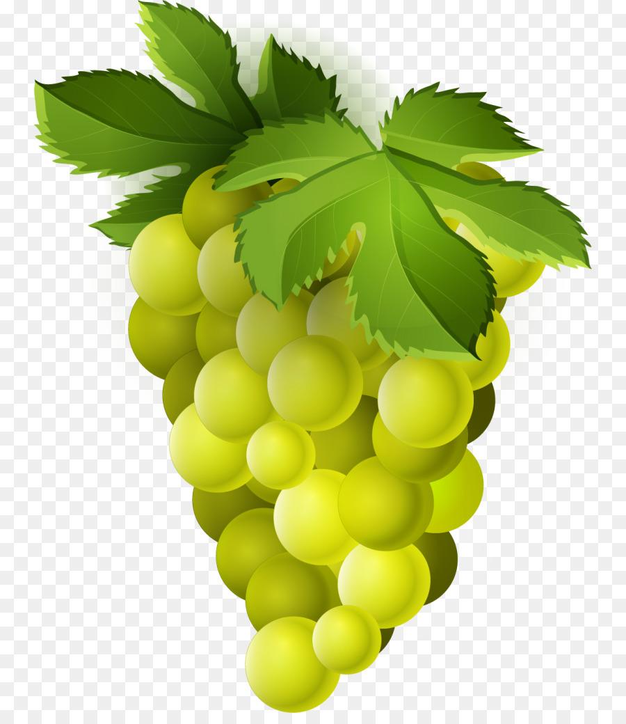 Family tree background wine. Grape clipart yellow