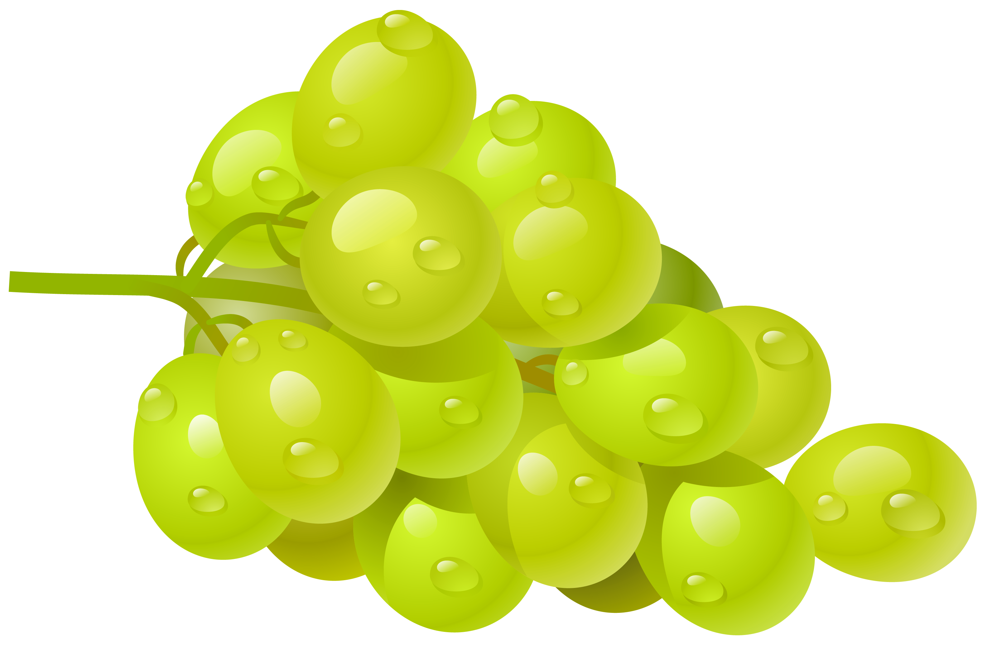 Grapes clipart. White grape png picture