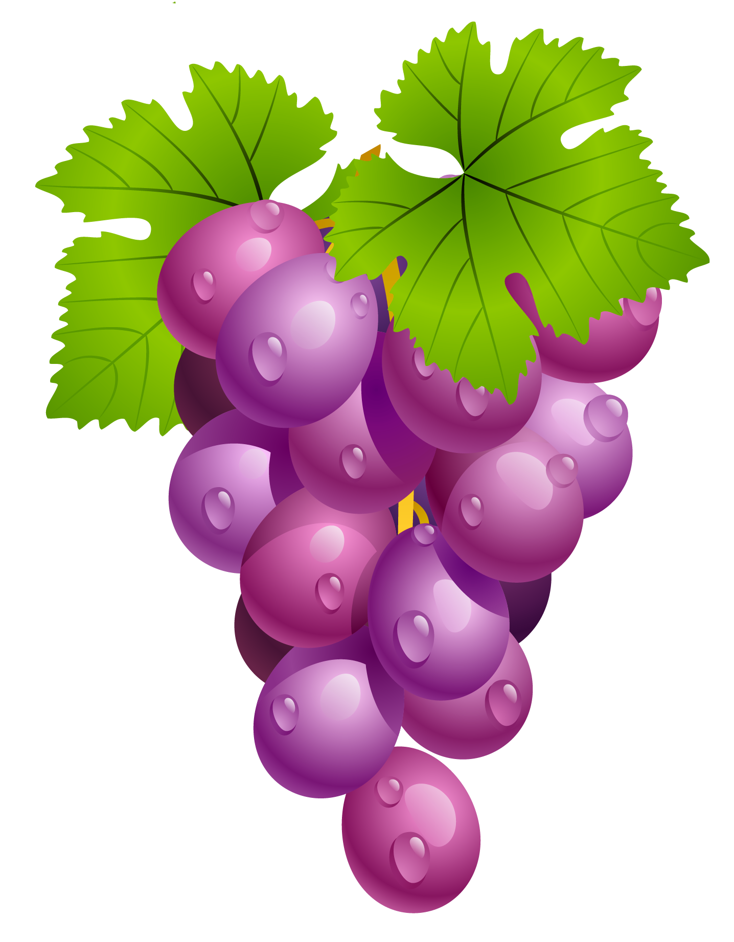 Gardening clipart agriculture science. Grapes with leaves png