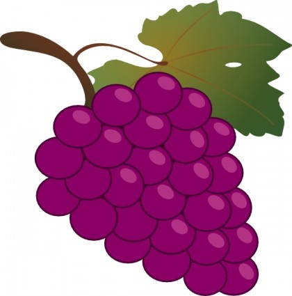 Grape clipart eye. Free grapes pictures download