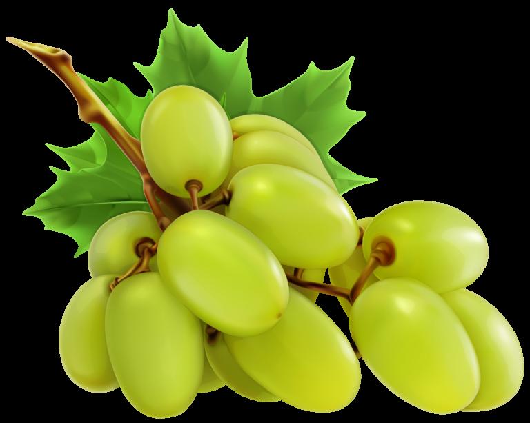 Grapes clipart bowl grape. Images about clip art